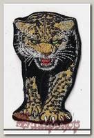 Термонашивка Леопард
