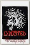 Нашивка The Exploited