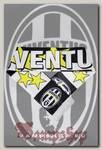Шарф летний Juventus