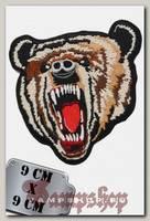 Термонашивка Рычащий медведь
