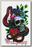 Переводная татуировка Змея и череп