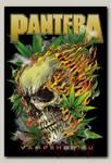 Магнит RockMerch Pantera