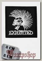 Термонашивка The Exploited