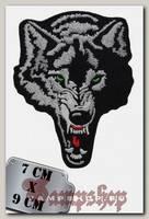 Термонашивка Злой волк
